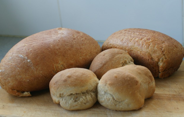 Bread, bread making, historic recipe, Robert May, French bread the best way, beer bread